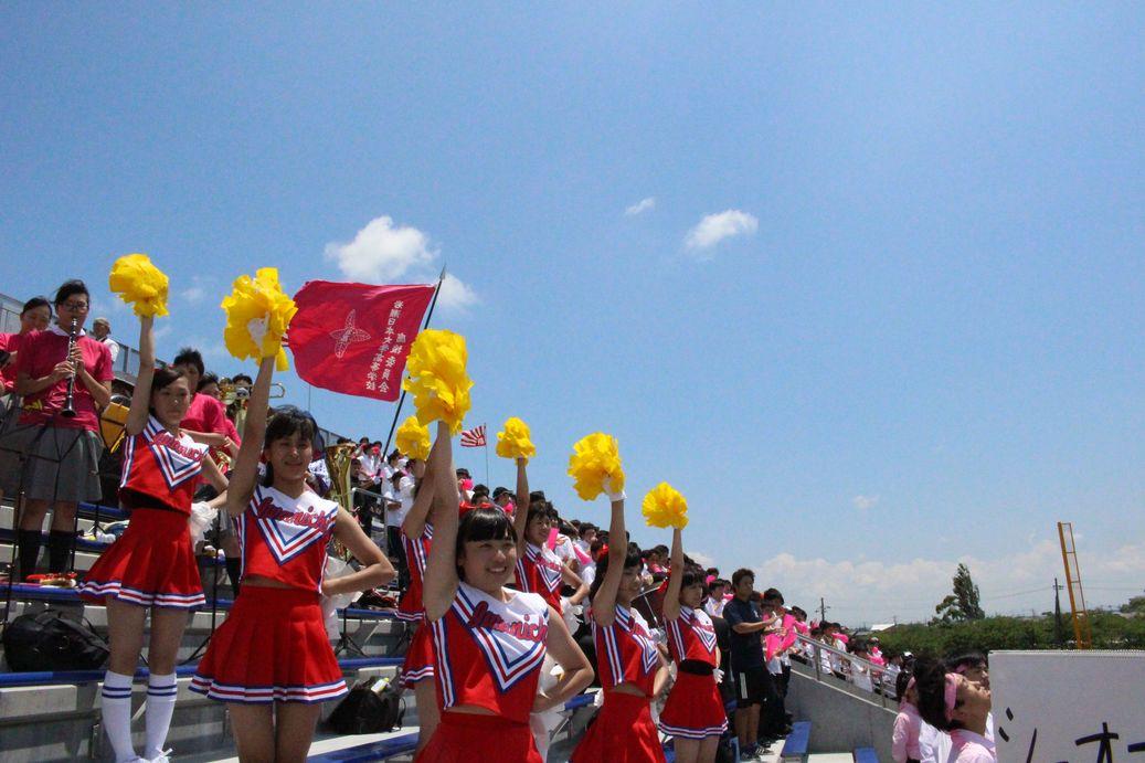 野球 茨城 県 大会 高校
